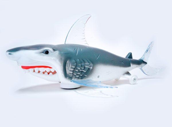 crazy_shark_3